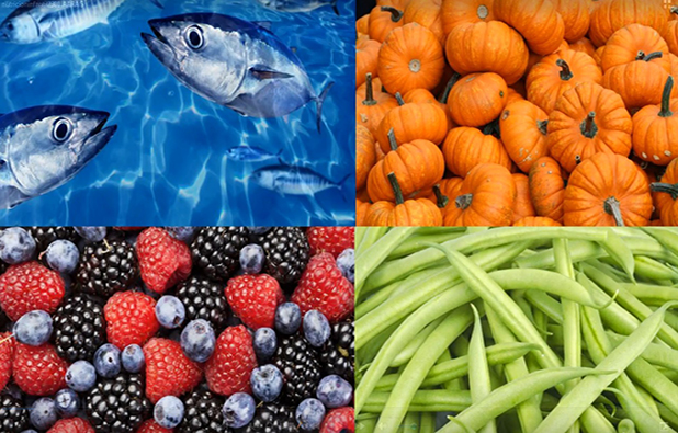 ¿Qué alimentos hay que incluir en la dieta diaria de nuestros hijos?