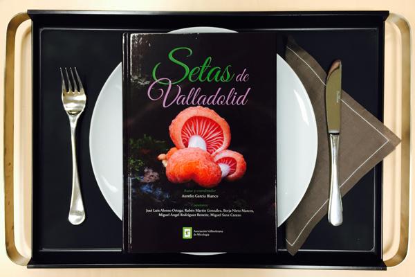 Setas de Valladolid